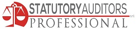 Statutory Auditors Professional
